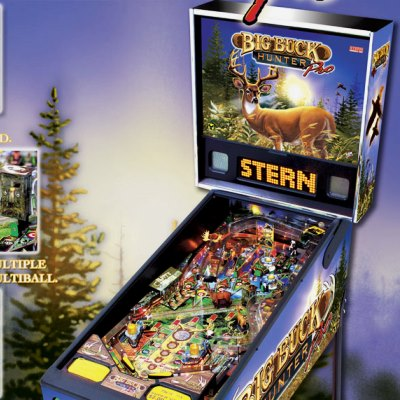 stern, big buck hunter pro, pinball, sales, price, date, city, condition, auction, ebay, private sale, retail sale, pinball machine, pinball price